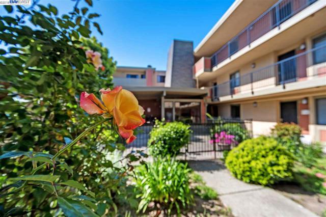 15335 Washington Ave #210, San Leandro, CA 94579 (#40818225) :: The Grubb Company