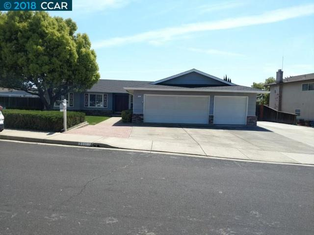 3111 Mountaire Dr, Antioch, CA 94509 (#40818687) :: Estates by Wendy Team
