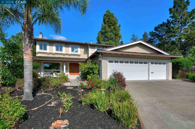 30 Stallion Ct, Walnut Creek, CA 94596 (#40819888) :: Armario Venema Homes Real Estate Team