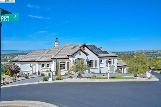 1505 Elderberry Ct, Pleasanton, CA 94588 (#40820146) :: Armario Venema Homes Real Estate Team
