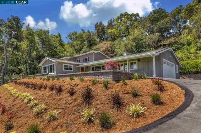 175 Camino Don Miguel, Orinda, CA 94563 (#40822696) :: Armario Venema Homes Real Estate Team
