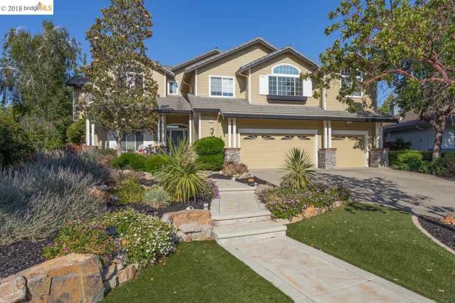 570 Garnet Ter, Brentwood, CA 94513 (#40823494) :: Estates by Wendy Team