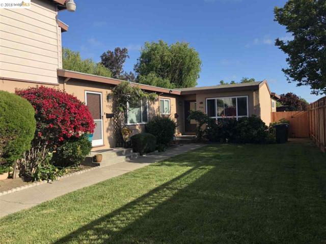 934 Fargo Ave, San Leandro, CA 94579 (#40824139) :: Armario Venema Homes Real Estate Team