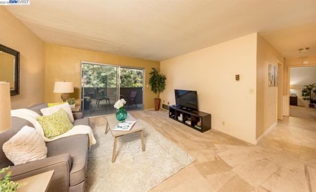 47112 Warm Springs #201, Fremont, CA 94539 (#40829027) :: Armario Venema Homes Real Estate Team
