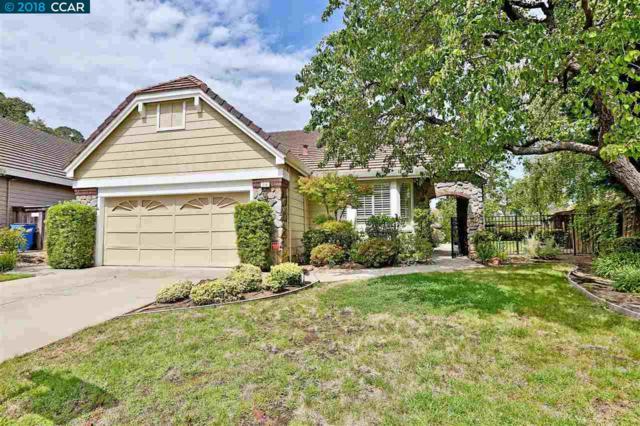 214 Falcon Pl, Clayton, CA 94517 (#40829483) :: Estates by Wendy Team