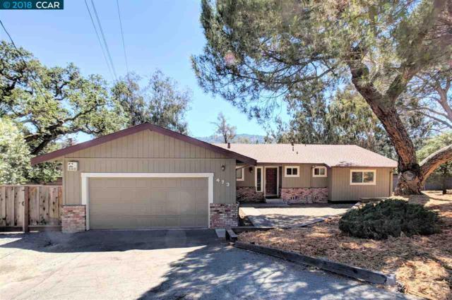 473 El Rio Road, Danville, CA 94526 (#40830480) :: Armario Venema Homes Real Estate Team