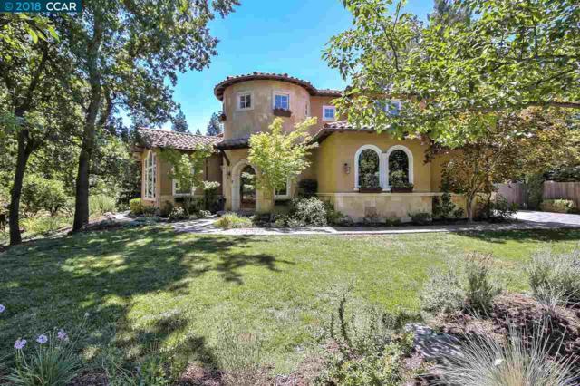 6 Camino Monte Sol, Alamo, CA 94507 (#40831763) :: Armario Venema Homes Real Estate Team