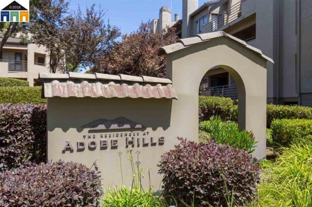 39152 Guardino Drive #206, Fremont, CA 94538 (#40832611) :: Armario Venema Homes Real Estate Team
