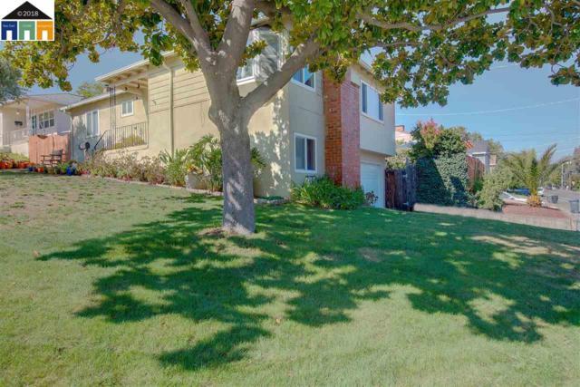 3920 Vineyard Ave., Pleasanton, CA 94566 (#40837255) :: Armario Venema Homes Real Estate Team