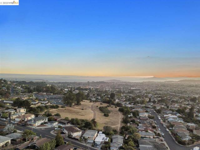 6239 Plymouth Ave, Richmond, CA 94805 (#40838063) :: Estates by Wendy Team