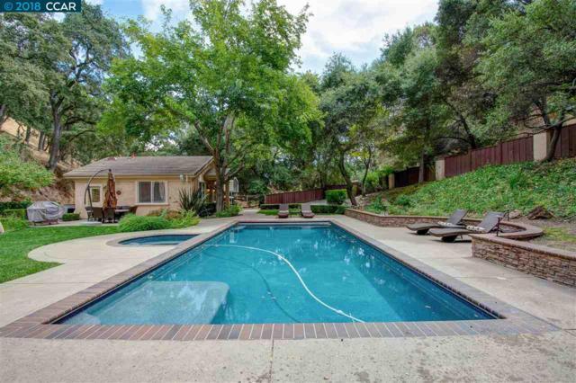 1710 Las Trampas Rd, Alamo, CA 94507 (#40838221) :: Estates by Wendy Team