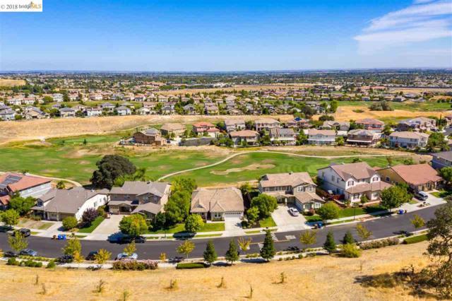702 San Juan Oaks Rd, Brentwood, CA 94513 (#40838694) :: Estates by Wendy Team