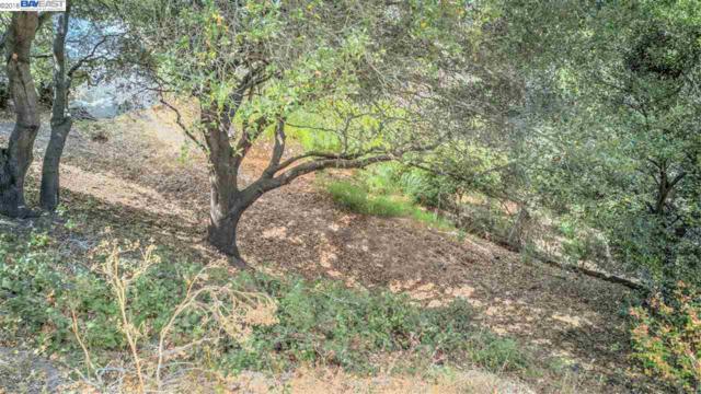 20 Lucille Way, Orinda, CA 94563 (#40840661) :: Armario Venema Homes Real Estate Team