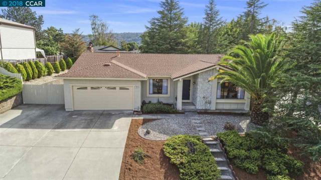 300 Ponderosa Ct, Richmond, CA 94803 (#40840946) :: The Lucas Group