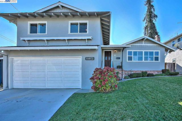 18973 Natalie Ct, Castro Valley, CA 94546 (#40842681) :: The Grubb Company