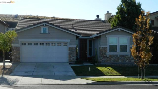 705 Flemish Ct, Brentwood, CA 94513 (#40843136) :: The Lucas Group