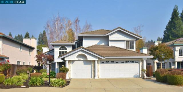 3359 Green Meadow Dr, Danville, CA 94506 (#40846075) :: Estates by Wendy Team
