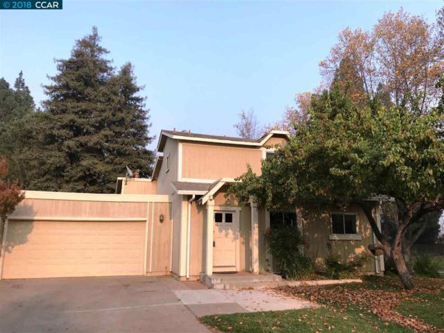 599 Mt Dell Dr, Clayton, CA 94517 (#40846116) :: Estates by Wendy Team