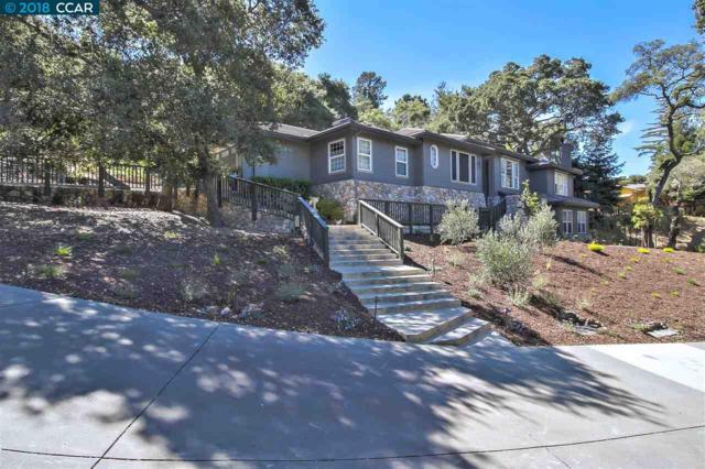 5 Sunrise Hill Rd, Orinda, CA 94563 (#40846176) :: J. Rockcliff Realtors