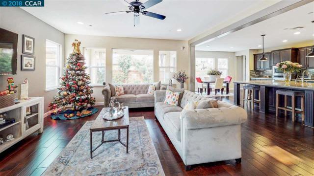 565 Fallsburg Court, Brentwood, CA 94513 (#40846350) :: Estates by Wendy Team