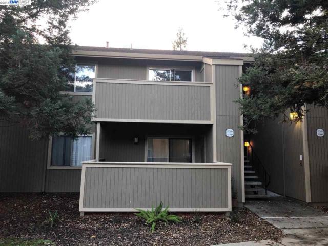 37346 Spruce Ter, Fremont, CA 94536 (#40847019) :: Armario Venema Homes Real Estate Team