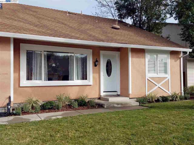 3645 Virgin Islands Ct, Pleasanton, CA 94588 (#40850320) :: Armario Venema Homes Real Estate Team