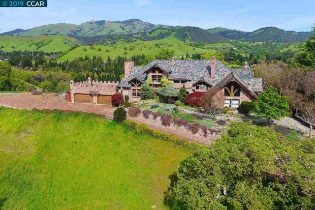 176 Mountain Canyon Ln, Alamo, CA 94507 (#40856515) :: Armario Venema Homes Real Estate Team