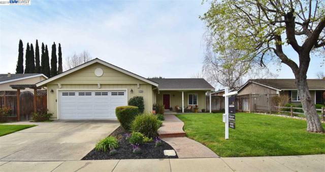 4758 Mchenry Gate Way, Pleasanton, CA 94566 (#40857798) :: Armario Venema Homes Real Estate Team