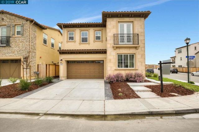 5161 Rowan Drive, San Ramon, CA 94582 (#40861311) :: Armario Venema Homes Real Estate Team