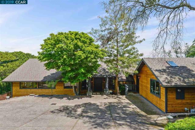 649 Sky Ranch Ct, Lafayette, CA 94549 (#40861581) :: J. Rockcliff Realtors