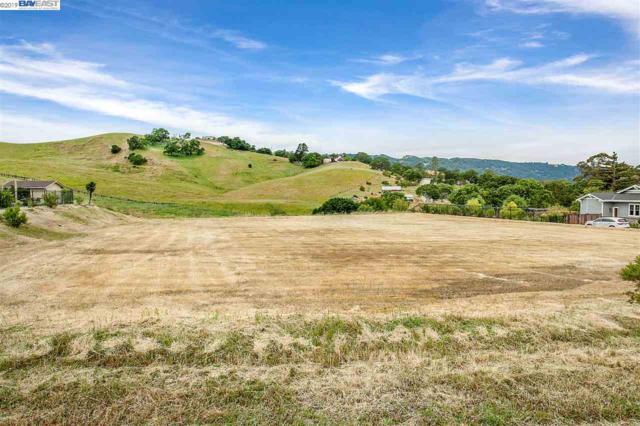 6123 Sanctuary Ln, Pleasanton, CA 94566 (#40863613) :: Armario Venema Homes Real Estate Team