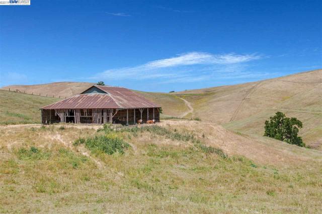 00 Reuss Rd, Livermore, CA 94550 (#40865551) :: Armario Venema Homes Real Estate Team