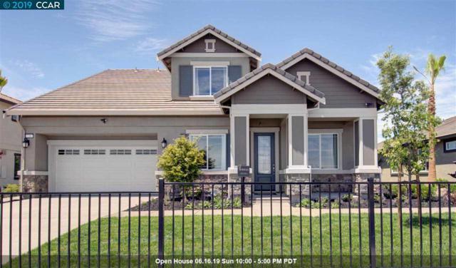 429 Diamond Peak Lane, Oakley, CA 94561 (#40870286) :: Blue Line Property Group