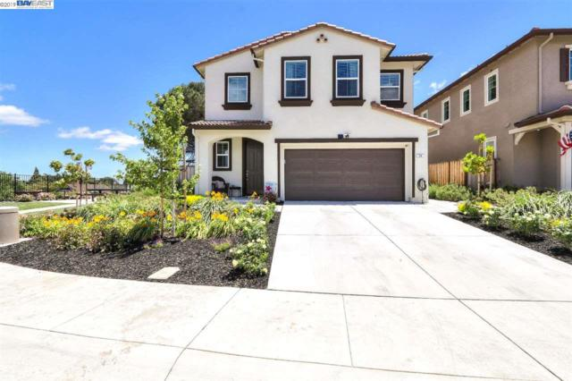 58 Driftwood Circle, Bay Point, CA 94565 (#40873883) :: Armario Venema Homes Real Estate Team