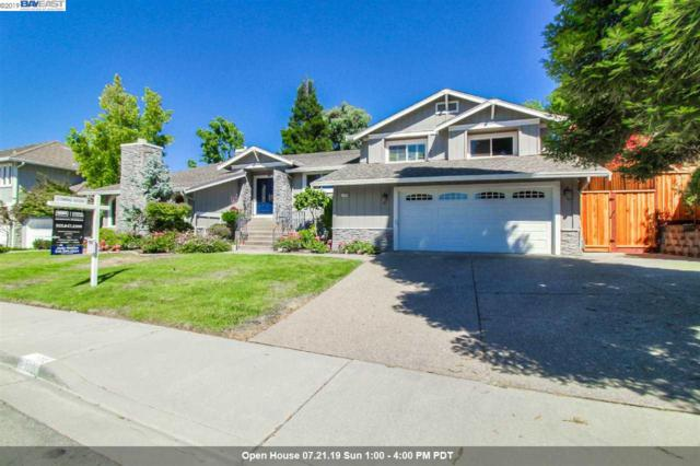 1006 Zinfandel Ct, Pleasanton, CA 94566 (#40874468) :: Armario Venema Homes Real Estate Team