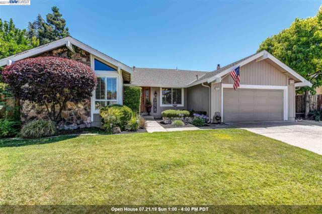 4411 Shearwater Ct, Pleasanton, CA 94566 (#40874638) :: Armario Venema Homes Real Estate Team