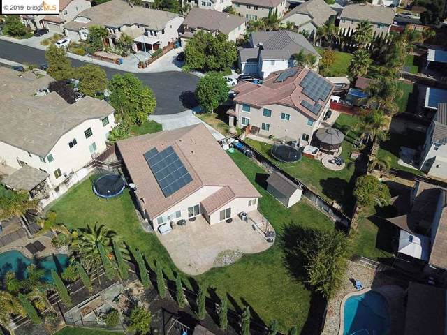238 Whitman Ct, Discovery Bay, CA 94505 (#40881909) :: The Lucas Group