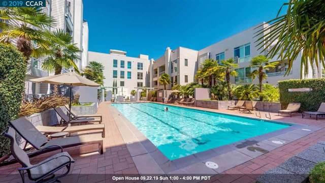 1655 N California Blvd #204, Walnut Creek, CA 94596 (#40882467) :: Armario Venema Homes Real Estate Team