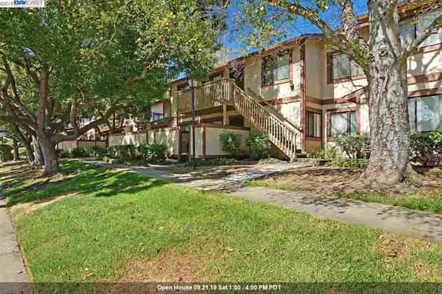 177 Aurora Plz, Union City, CA 94587 (#40882539) :: Blue Line Property Group