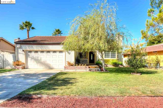 1022 Willow Lake Rd, Discovery Bay, CA 94505 (#40885405) :: Blue Line Property Group