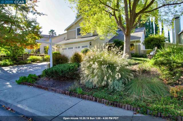 314 Scarlet Oak Ct, Pleasant Hill, CA 94523 (#40886480) :: Blue Line Property Group