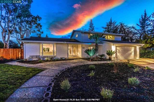 705 Mandarin Ln, Walnut Creek, CA 94598 (#40892579) :: Armario Venema Homes Real Estate Team