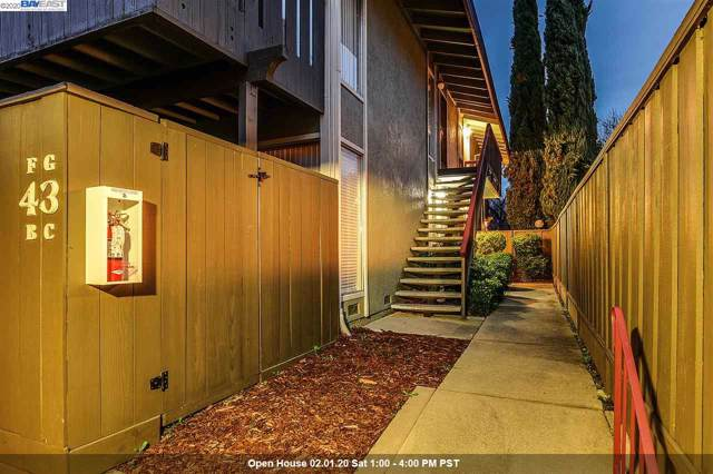 43 Massolo Dr G, Pleasant Hill, CA 94523 (#40893536) :: Armario Venema Homes Real Estate Team