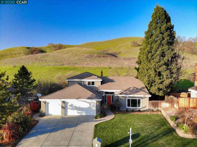 1024 Hill Meadow Pl, Danville, CA 94526 (#40895533) :: Realty World Property Network
