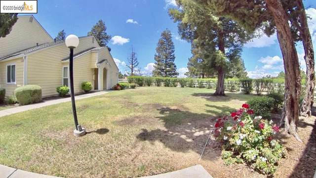 2801 Winding Ln, Antioch, CA 94531 (#40905178) :: Armario Venema Homes Real Estate Team