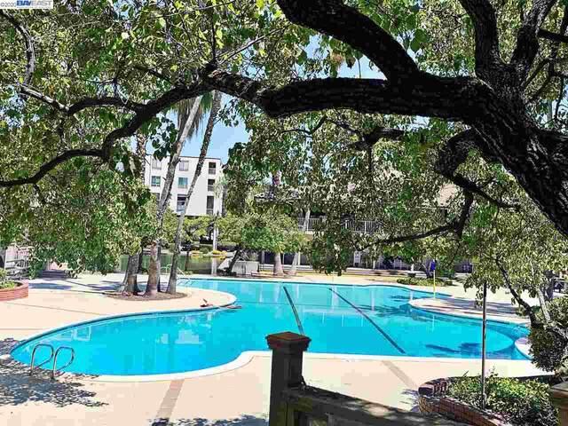 430 N Civic Dr #208, Walnut Creek, CA 94596 (#40913087) :: Armario Venema Homes Real Estate Team