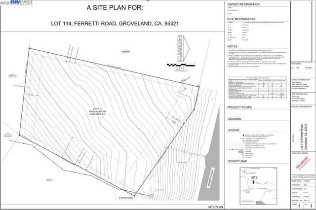 19805 Ferretti Rd, Groveland, CA 95321 (#40917806) :: Realty World Property Network