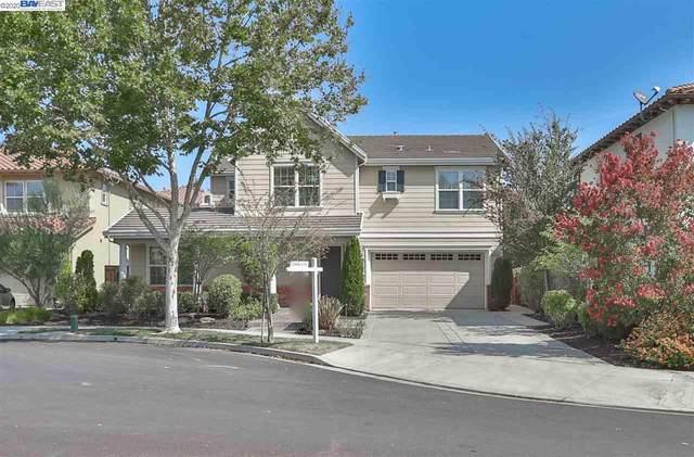 446 Watsonia Ct, San Ramon, CA 94582 (#40921570) :: Real Estate Experts