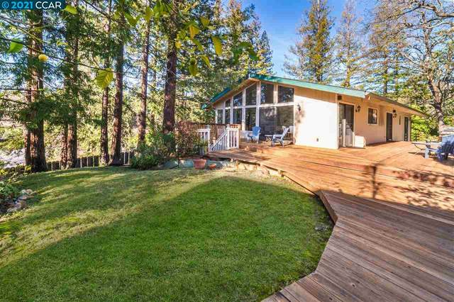 614 Dolphin Drive, Danville, CA 94526 (#40933308) :: The Lucas Group