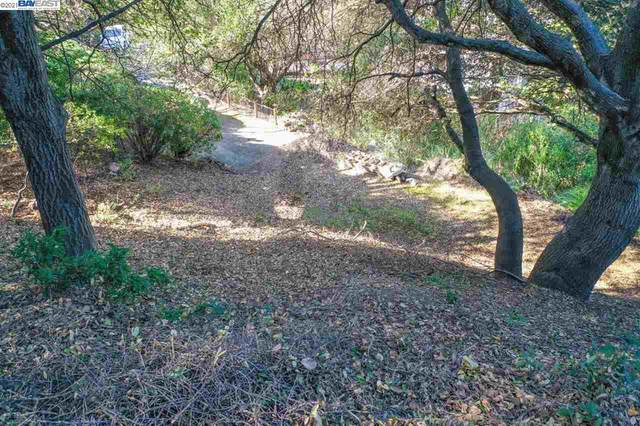 20 Lucille Way, Orinda, CA 94563 (#40934731) :: Jimmy Castro Real Estate Group
